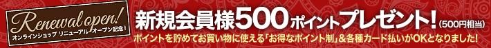 500Pバナー