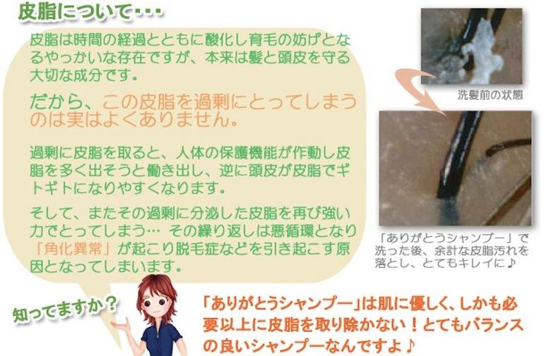 アミノ酸石鹸シャンプーのありがとうシャンプー皮脂