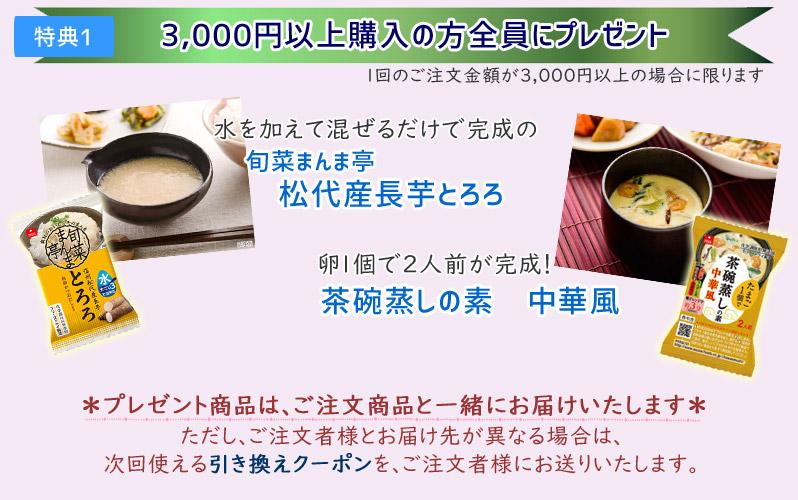 特典1 3000円以上でプレセント