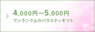 4,000円〜5,000円