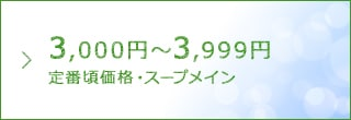 3000〜3999
