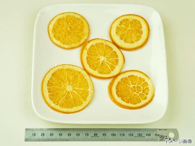 フリーズドライマンゴーのサイズ