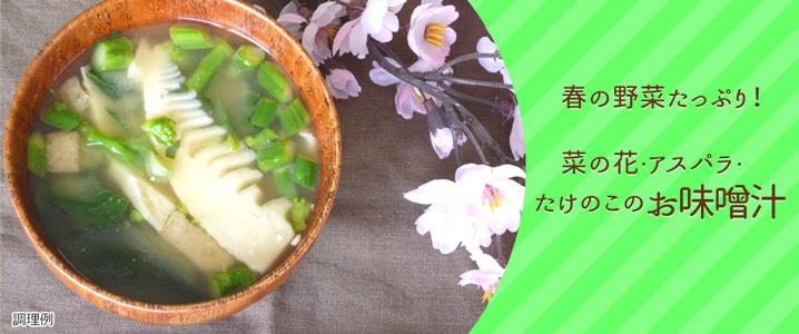 もっと知りたい!春野菜のお味噌汁