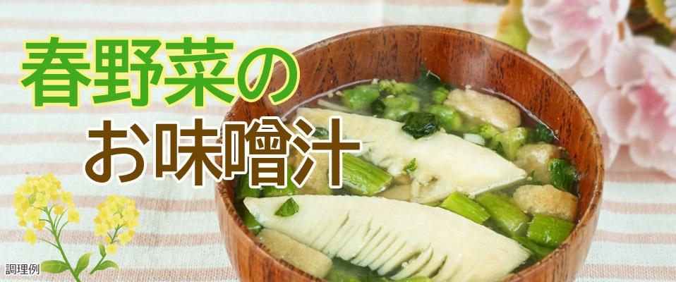 春野菜のお味噌汁タイトル