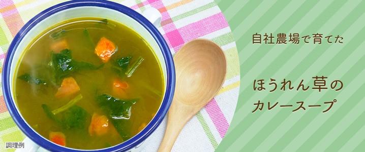 もっと知りたい!味噌豆乳スープ