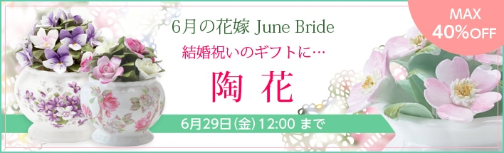 6月おすすめ陶花