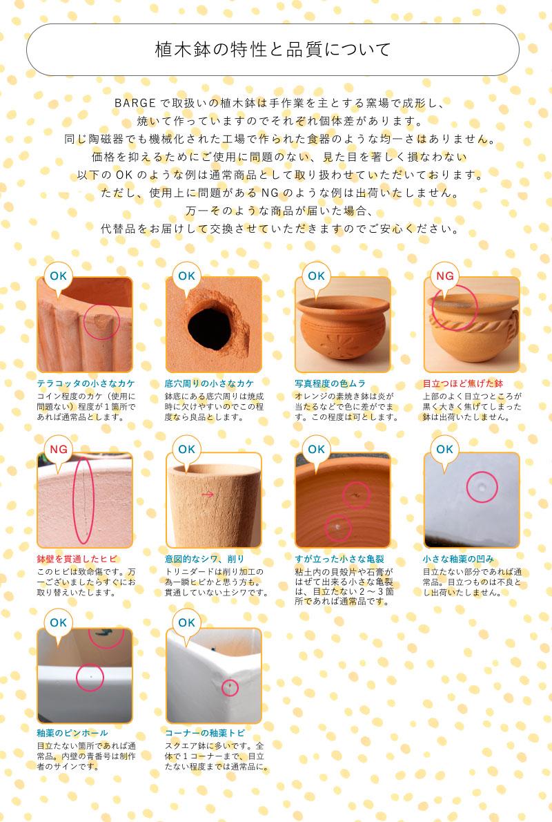 植木鉢の特性と品質について
