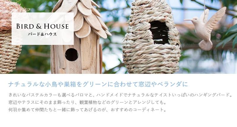 バード&ハウス