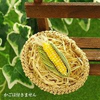 Corn(トウモロコシ)ブローチ 黄色