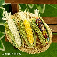 Corn(トウモロコシ)ブローチ 3色セット