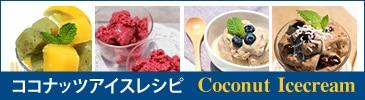 ココナッツアイスレシピ