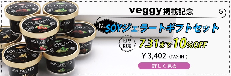 SOYジェラートギフトセット7月31日まで10%OFF