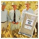 ランドバーグ農場有機米