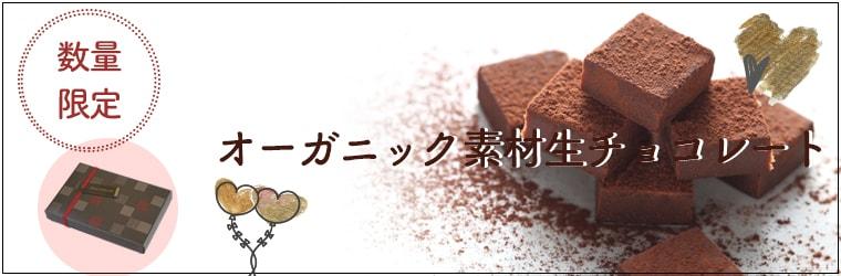 オーガニック生チョコレート