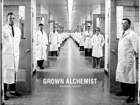 GRONW ALCHEMSIT