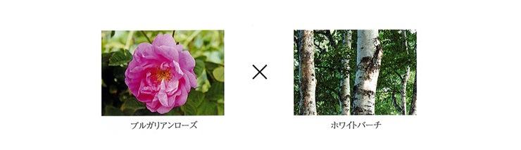 花々の癒しの力「ブルガリアンローズ」と森林の生命力「ホワイトバーチ」で健やかな美しさを実現します。