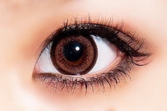 ウイングシリーズのブラウン系レンズ