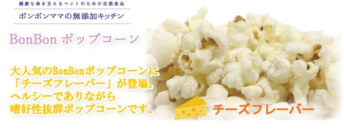 チーズTOP画像