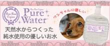 天然水からつくった愛犬用ピュアウォーター