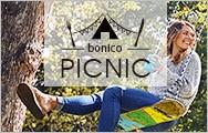 picnic特集