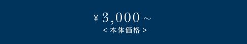 \3,000〜(本体価格)