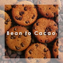 Bean to Cacao ビーントゥーカカオ
