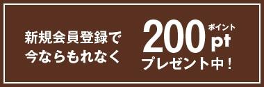 カカオティエゴカンオンラインショップ新規会員ポイント200