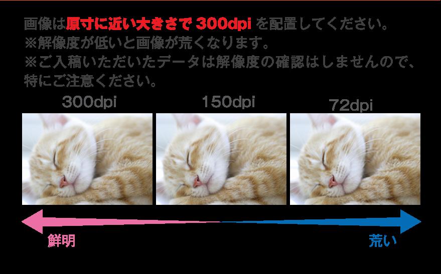 画像は原寸に近い大きさで300dpiを配置してください。
