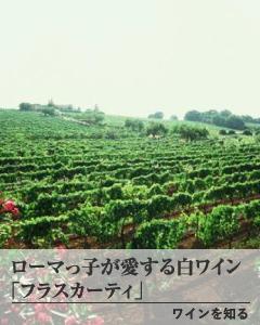ワインを知る バナー1