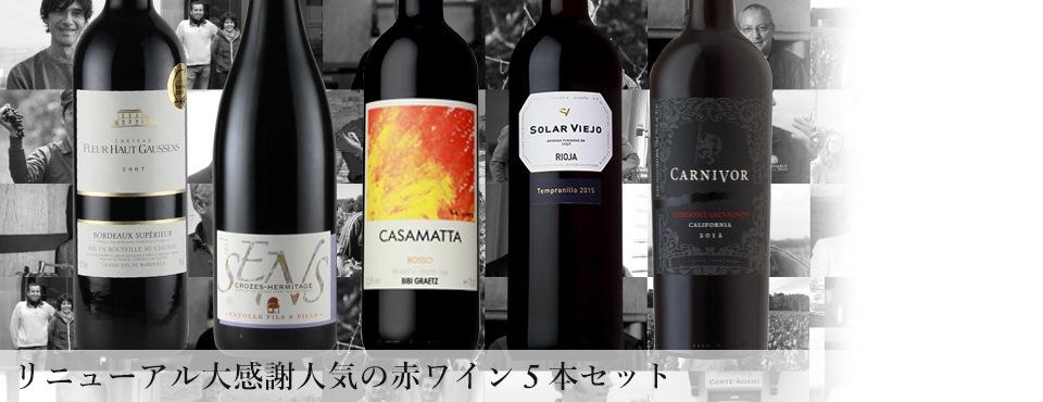 リニューアル大感謝 人気の赤ワイン5本セット