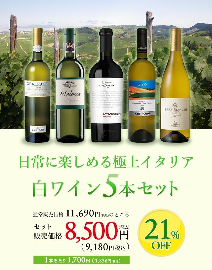 日常に楽しめる極上イタリア 白ワイン5本セット