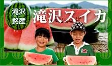 滝沢名産 滝沢スイカ
