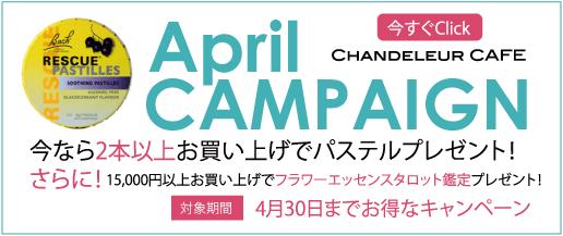 4月キャンペーン