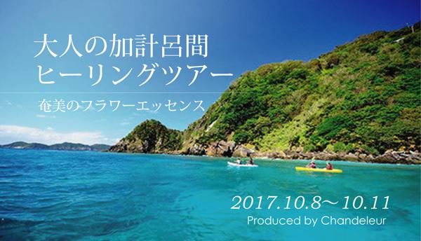 奄美大島の四季シリーズ