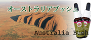 オーストラリアブッシュ