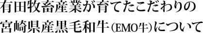 宮崎県産黒毛和牛(EMO牛)について