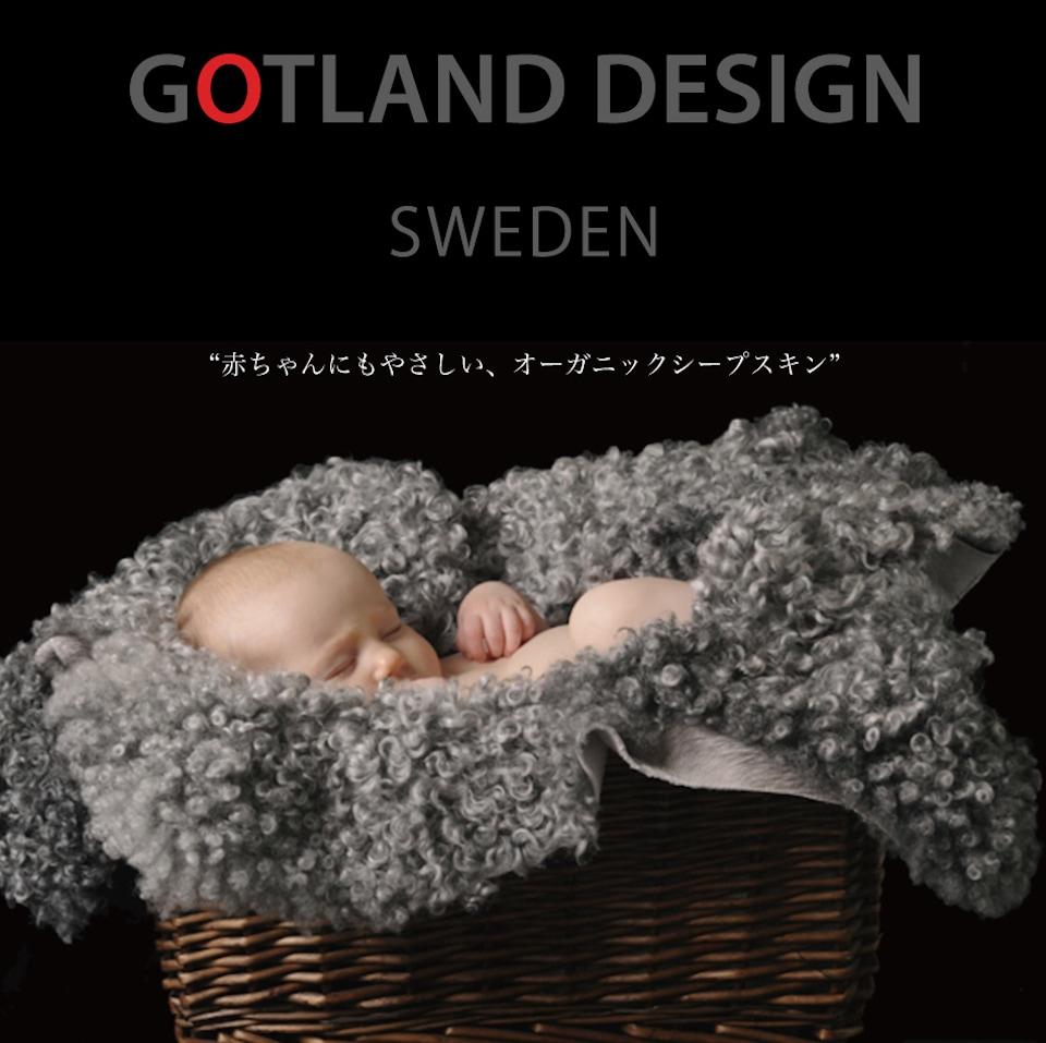 cloversky × gotland sheepskin
