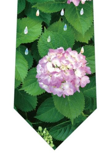 あじさいとカラフルな雨ネクタイ(薄ピンク)の写真