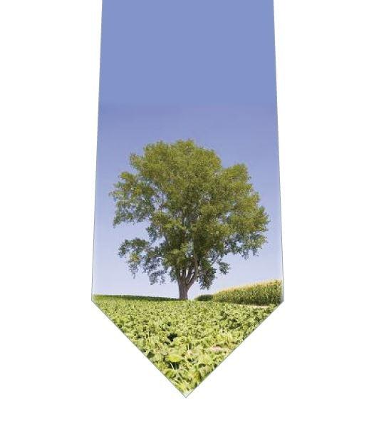 大きな木ネクタイの写真