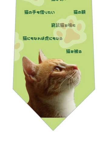猫のことわざネクタイの写真