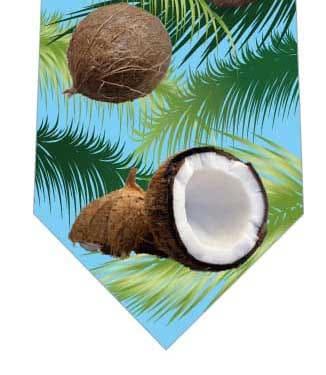 ココナッツネクタイ(水色)の写真