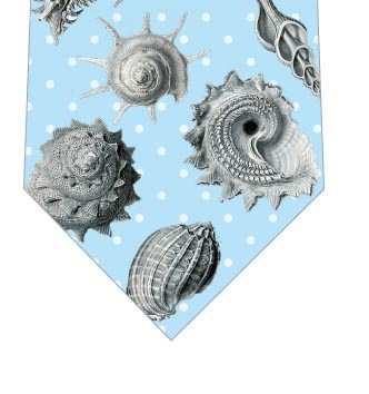 貝殻ネクタイ(水色)の写真