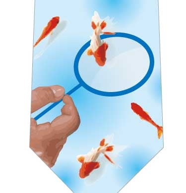 金魚すくいネクタイの写真