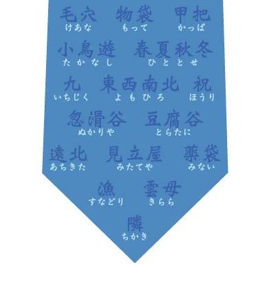 珍しい名字ネクタイ(浅い青)の写真
