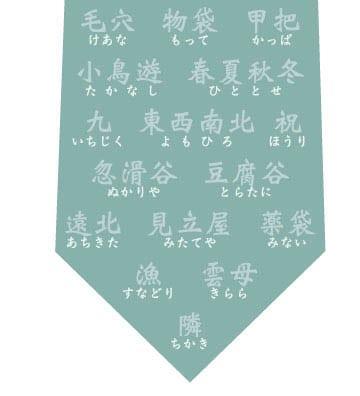 珍しい名字ネクタイ(浅い緑)の写真