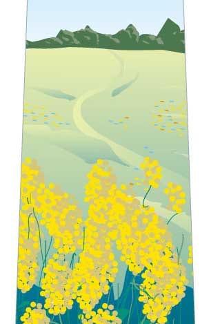 菜の花とモンシロチョウネクタイの写真