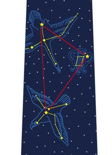 夏の大三角形ネクタイの写真