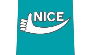 NICEネクタイの写真