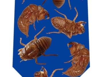 蝉の抜け殻ネクタイ(濃い青)の写真