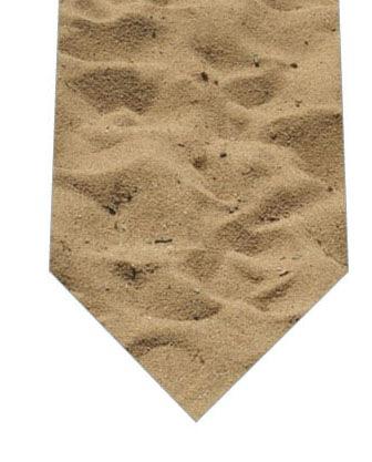砂浜ネクタイの写真